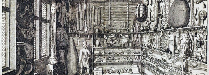 traces of spaces: a cabinet of curiosities exhibit